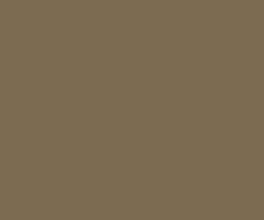 Cerakote coating solid colors Burnt Bronze H 148