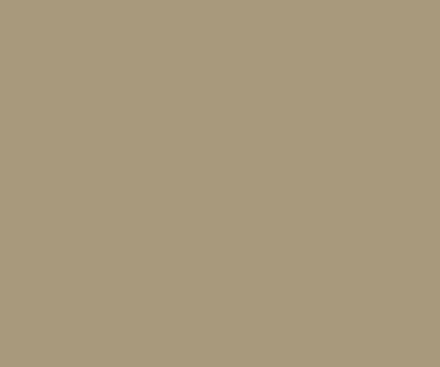 Cerakote coating solid colors Desert Sage H 247