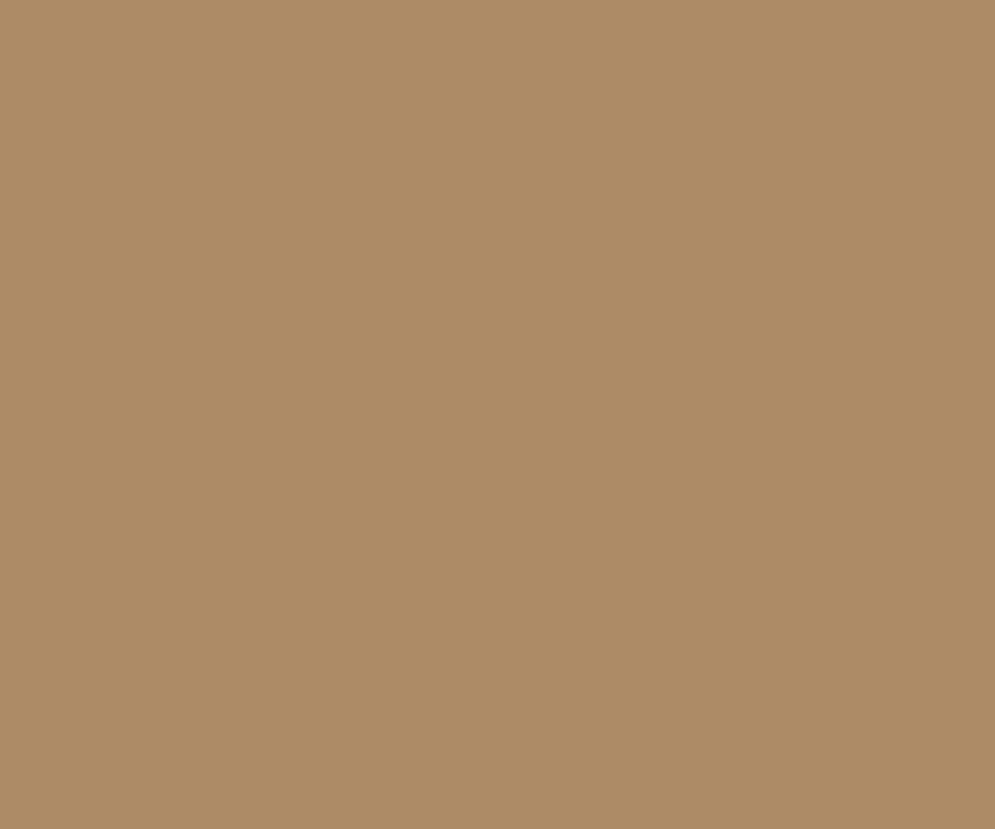 Cerakote coating solid colors Glock FDE H 261
